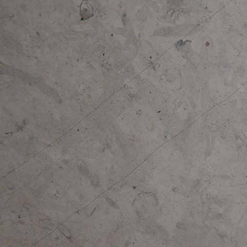 Limestone African Grey