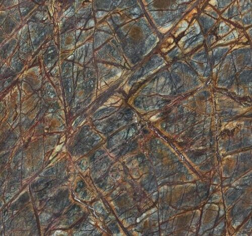 marmer-brown-rainforest